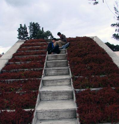 escalera_estudiantes